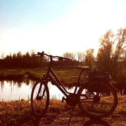 Huur fiets en kies leukste fietsroute